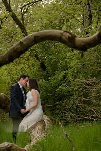 3102_d810a_Alex_and_Yee_Henry_Cowell_Park_Felton_Wedding_Bridal_Portrait_Photography