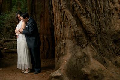 3133_d810a_Alex_and_Yee_Henry_Cowell_Park_Felton_Wedding_Bridal_Portrait_Photography