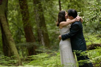 3128_d810a_Alex_and_Yee_Henry_Cowell_Park_Felton_Wedding_Bridal_Portrait_Photography