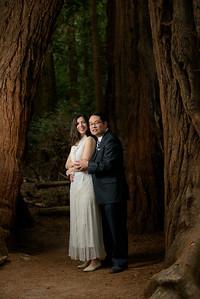 3138_d810a_Alex_and_Yee_Henry_Cowell_Park_Felton_Wedding_Bridal_Portrait_Photography