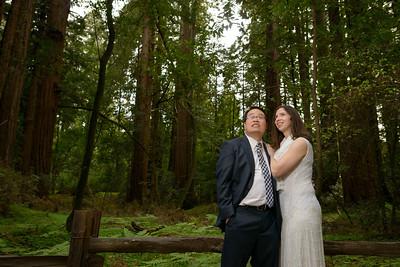 0182_d800b_Alex_and_Yee_Henry_Cowell_Park_Felton_Wedding_Bridal_Portrait_Photography