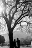 7500_d810a_Jackie_and_Preston_Hidden_Villa_Los_Altos_Engagement_Photography