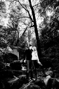 4808-d700_Megan_and_Stephen_Uvas_Canyon_Morgan_Hill_Engagement_Photography