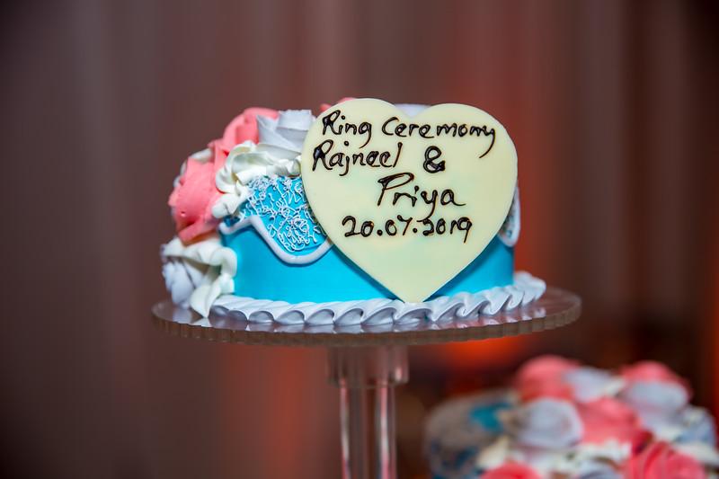 Rajneel & Priya_E_0027