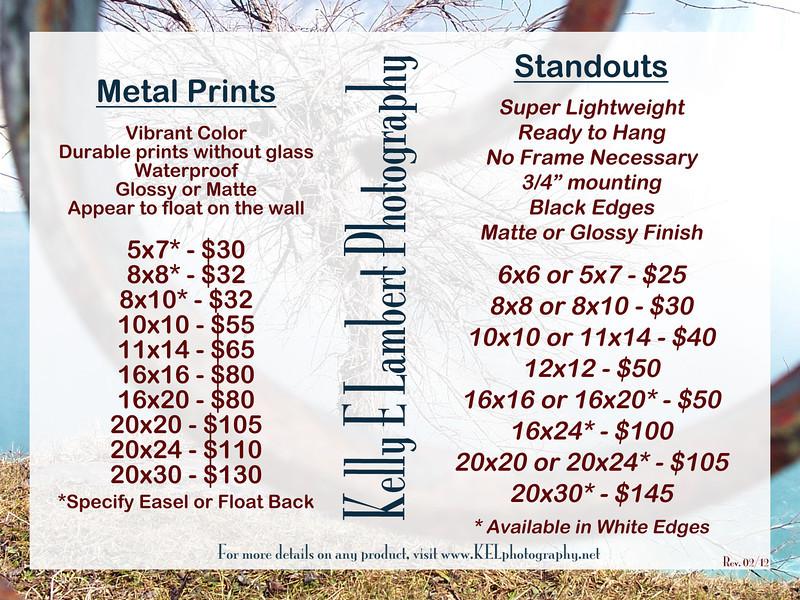 00009 Metal Standouts
