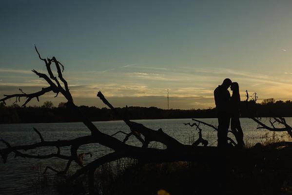 Fallen Tree Sunset