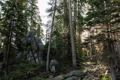 Chris   JeanAnn Taft Point Yosemite Engagement Session 004