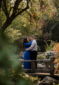 Alexandria Vail Photography Engagement Shinzen Garden 007
