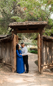 Alexandria Vail Photography Engagement Shinzen Garden 029