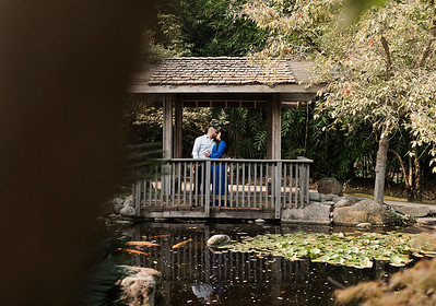 Alexandria Vail Photography Engagement Shinzen Garden 003