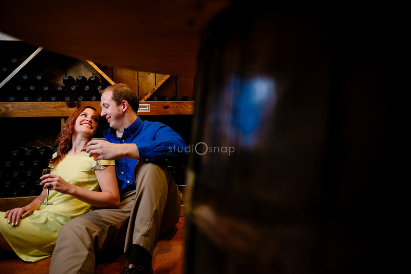 Lauren & Greg   Engagement Session   Blake's Orchard and Winery