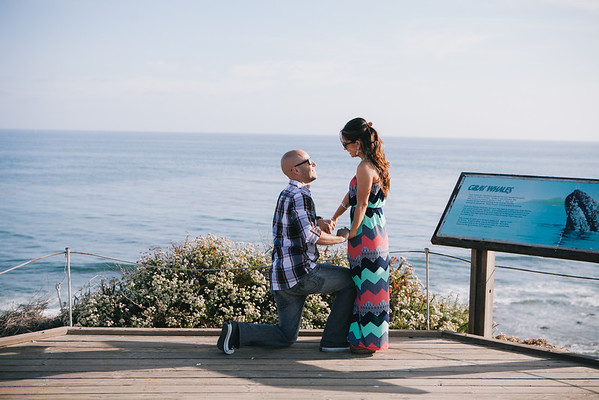 Matt Proposal - Newport Beach, CA