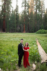 Alexandria Vail Photography Sequoia National Park Engagement 009