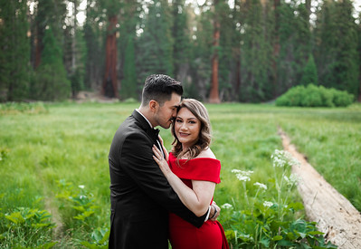 Alexandria Vail Photography Sequoia National Park Engagement 011