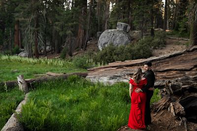 Alexandria Vail Photography Sequoia National Park Engagement 023