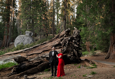 Alexandria Vail Photography Sequoia National Park Engagement 018