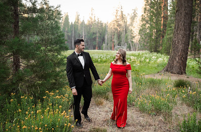 Alexandria Vail Photography Sequoia National Park Engagement 008