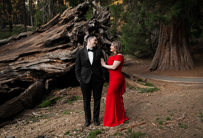 Alexandria Vail Photography Sequoia National Park Engagement 016