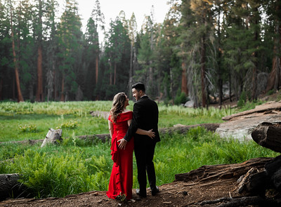 Alexandria Vail Photography Sequoia National Park Engagement 024