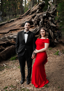 Alexandria Vail Photography Sequoia National Park Engagement 019