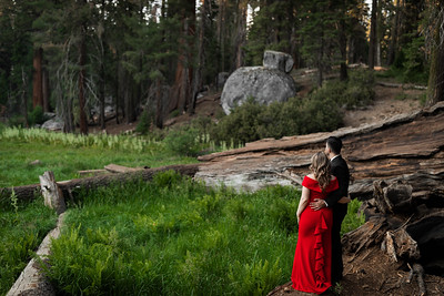 Alexandria Vail Photography Sequoia National Park Engagement 022