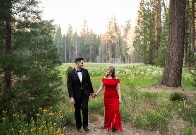 Alexandria Vail Photography Sequoia National Park Engagement 007