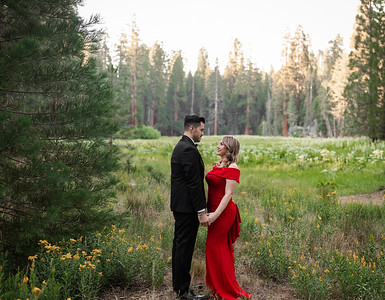Alexandria Vail Photography Sequoia National Park Engagement 004