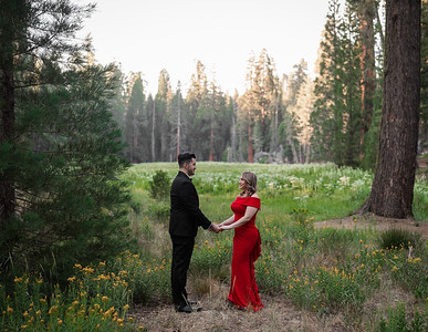 Alexandria Vail Photography Sequoia National Park Engagement 002