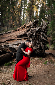 Alexandria Vail Photography Sequoia National Park Engagement 013