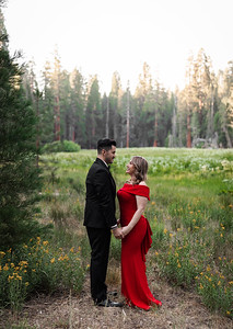 Alexandria Vail Photography Sequoia National Park Engagement 003