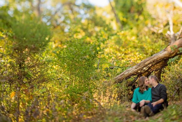 Sitting under the Tree Tilt-Shift