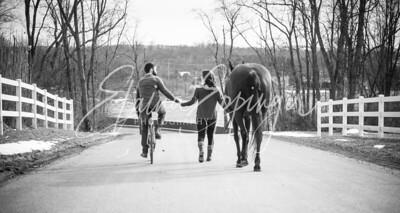 Engagement-1047