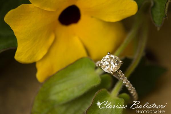 Shanna-Gaston Engagement-194