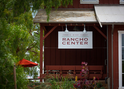 Stephanie and Morgan's Engagement