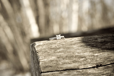 Joelle_and_Ryan-Engagement-038