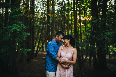 Permpreet + Sandeep - Engagement Session