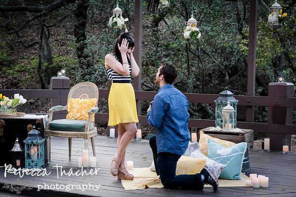 Andrea and Erik . Proposal
