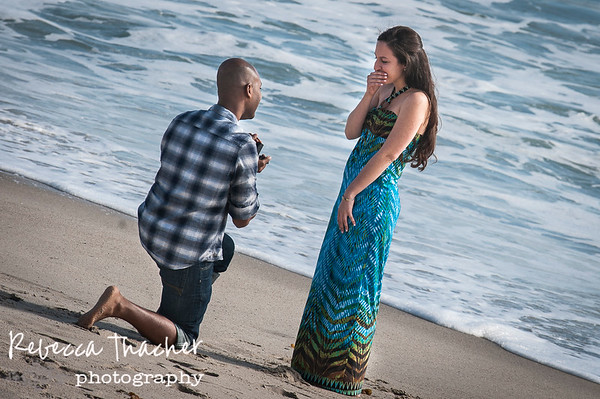 Carla & Ismael . Proposal