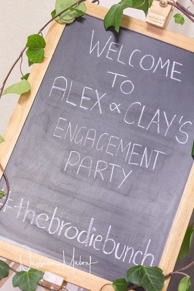 Alex and Clay Engagement13052017-118.jpg