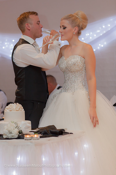 Cassandra & Lukes Wedding_010315_0342.jpg
