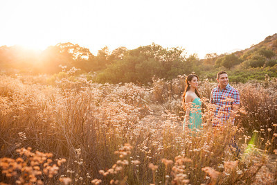 0055-130709-mayra-ron-engagement-©8twenty8-Studios