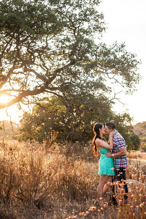 0049-130709-mayra-ron-engagement-©8twenty8-Studios