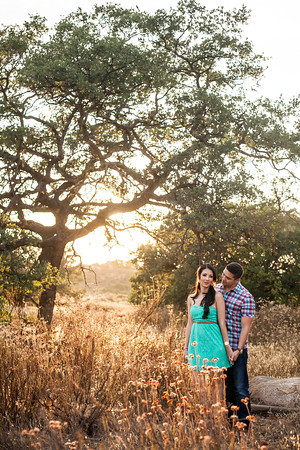 0045-130709-mayra-ron-engagement-©8twenty8-Studios