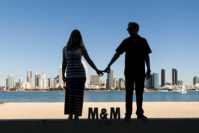 0041-131006-michelle-marcus-engagement-©8twenty8-Studios