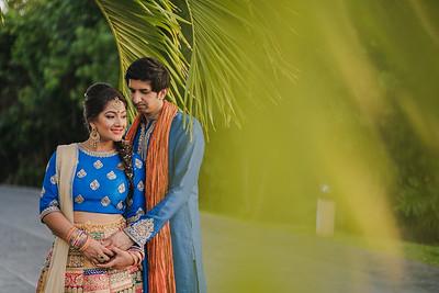 Ami & Jay Sangeet