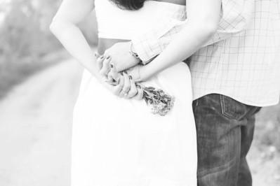 Culbertson Engagement 5 2013-006