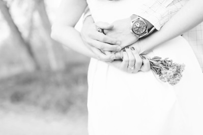 Culbertson Engagement 5 2013-010