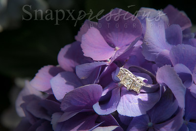Snapxpressions Photography
