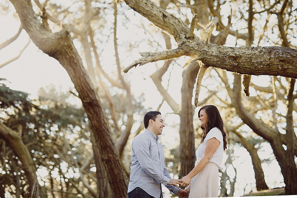 Katie+Kayvon_Engaged - 0001