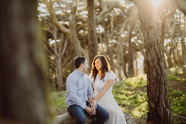 Katie+Kayvon_Engaged - 0010